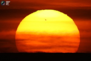 sunset_033